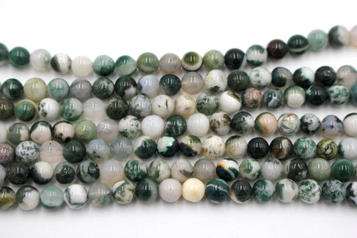 6mm tree agate, glossy, 1 strand, 16 inches, approx. 66 beads.