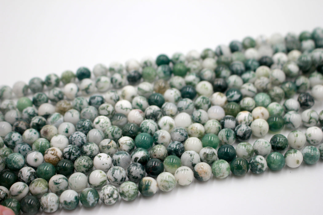 8mm tree agate, glossy, 1 strand, 16 inches, approx. 48 beads.