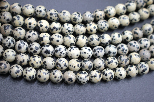 8mm dalmatian jasper, glossy, 1 strand, 16 inches, approx. 48 beads.