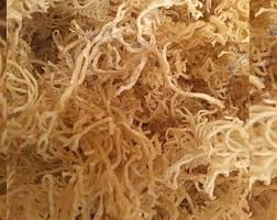 Jamaizing Life Raw Sea Moss