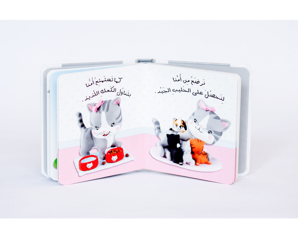 Baby Board Books - Kittens, MJ16589