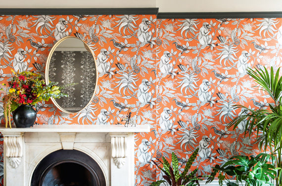 Cole and Son Ardmore Wallpaper Collection