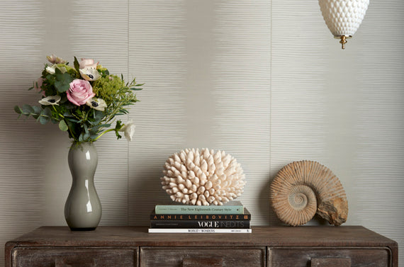 Cole and Son Curio Wallpaper Collection