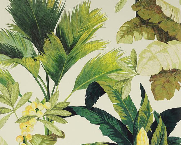 Manuel Canovas Salengro Kaki 03095-04 Wallpaper