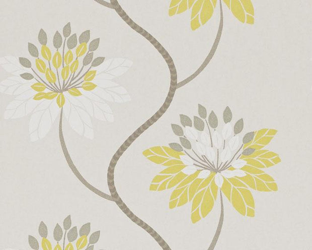 Harlequin Eloise Chartreuse/Warm Grey 111190 Wallpaper