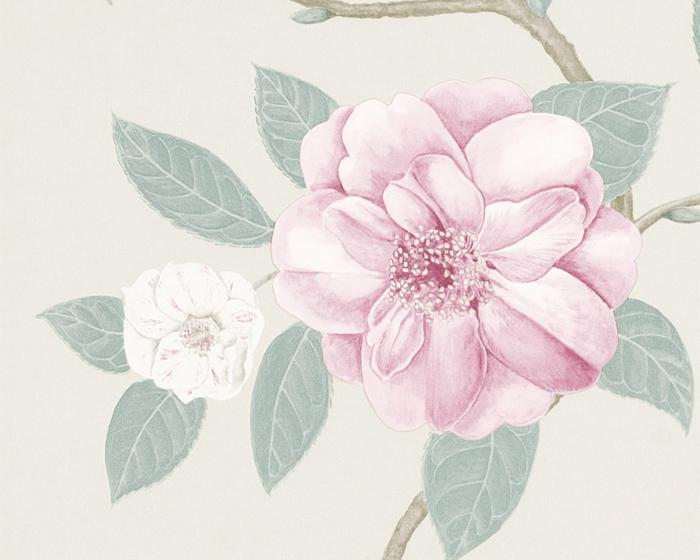 Sanderson Christabel Rose/Pewter 213376 Wallpaper