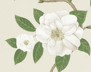Sanderson Christabel Ivory/Cream 213380 Wallpaper