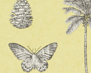 Sanderson Cocos Yellow/Charcoal 213382 Wallpaper