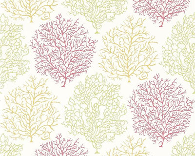 Sanderson Coral Reef Tropical/Brights 213391 Wallpaper