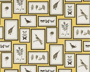 Sanderson Picture Gallery Yellow/Charcoal 213396 Wallpaper