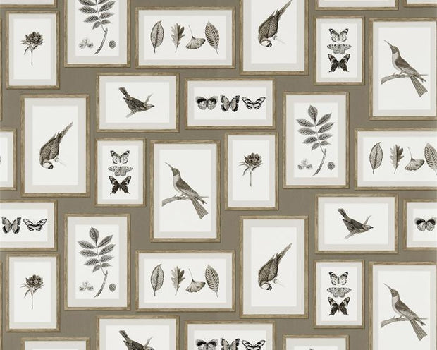 Sanderson Picture Gallery Taupe/Sepia 213397 Wallpaper