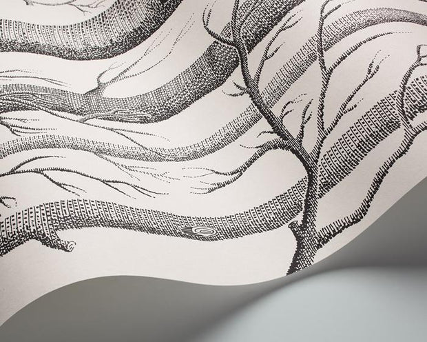 Cole & Son Woods 69/12147 Wallpaper