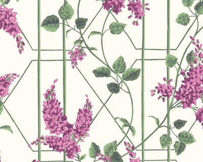 Cole & Son Wisteria 115/5013 Wallpaper