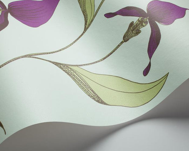 Cole & Son Orchid 66/4027 Wallpaper