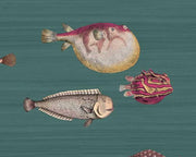 Cole & Son Acquario 114/12024 Wallpaper