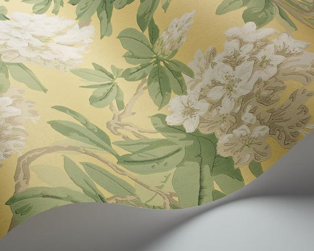 Cole & Son Bourlie 99/4021 Wallpaper