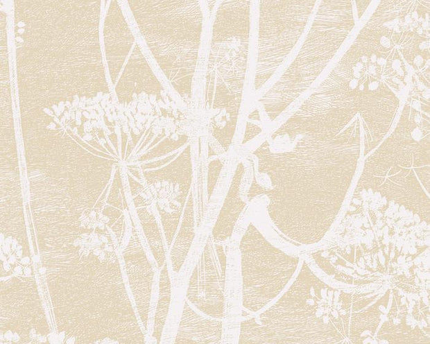 Cole & Son Cow Parsley 66/7049 Wallpaper