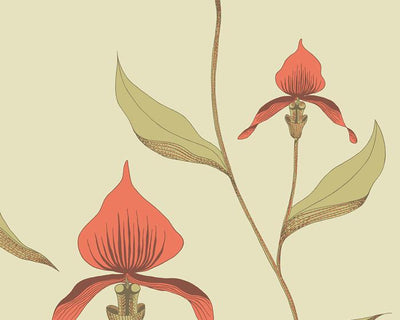 Cole & Son Orchid 66/4033 Wallpaper