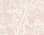 Cole & Son Cow Parsley 112/8028 Wallpaper
