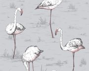 Cole & Son Flamingos 112/11040 Wallpaper