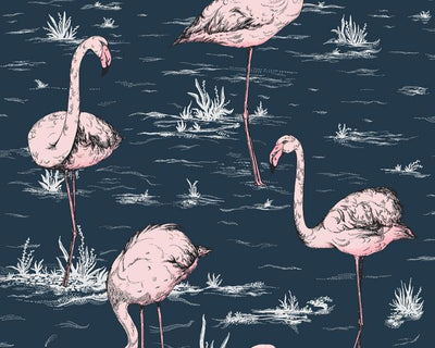 Cole & Son Flamingos 112/11041 Wallpaper