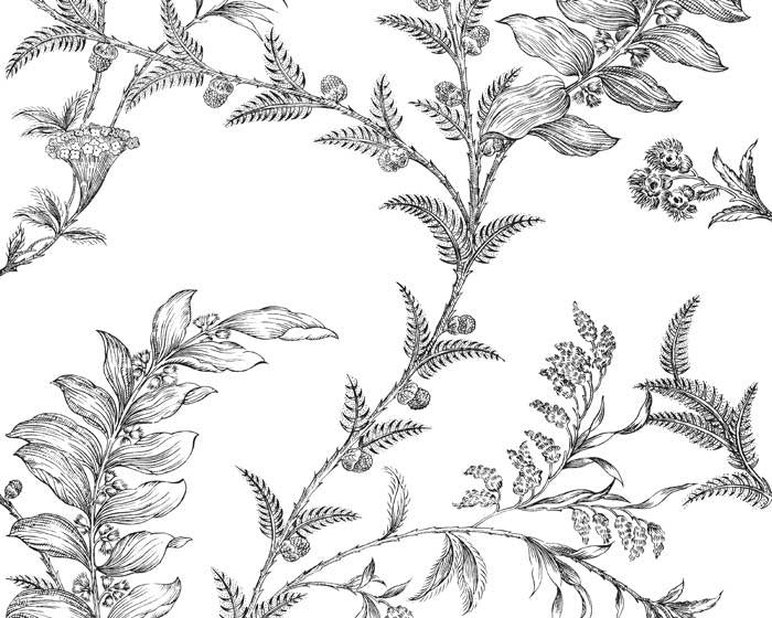 Cole & Son Ludlow 88/1005 Wallpaper