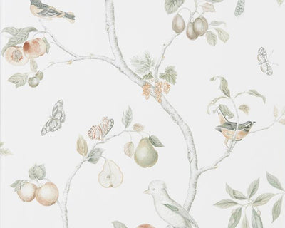 Sanderson Fruit Aviary Ivory/Mineral 216313 Wallpaper