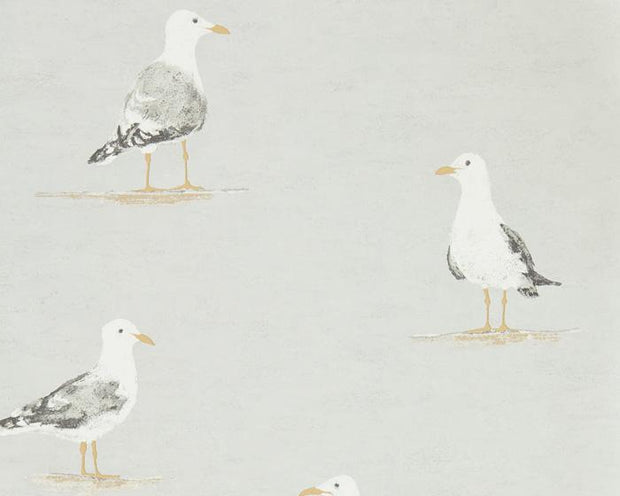 Sanderson Shore Birds Gull 216565 Wallpaper