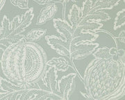 Sanderson Caspian Cantaloupe English Grey 216761 Wallpaper