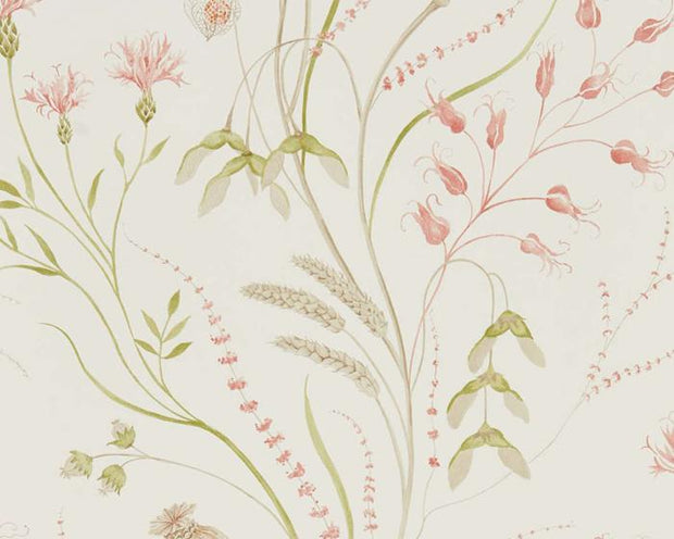 Sanderson Summer Harvest Claret/Olive 216495 Wallpaper