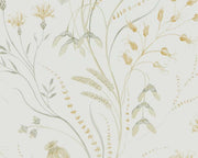 Sanderson Summer Harvest Silver Corn 216497 Wallpaper