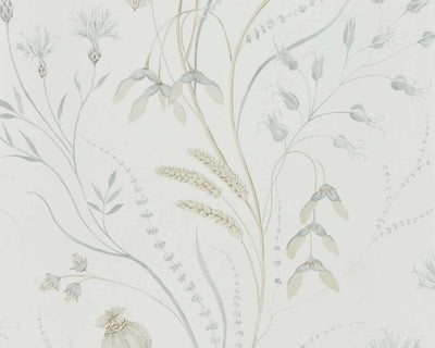 Sanderson Summer Harvest Silver/Chalk 216498 Wallpaper