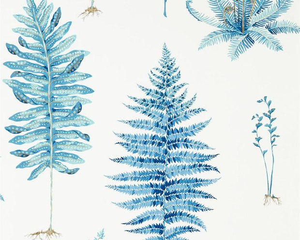 Sanderson Fernery China Blue 216635 Wallpaper