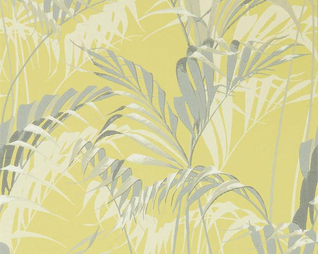 Sanderson Palm House Chartreuse/Grey 216642 Wallpaper