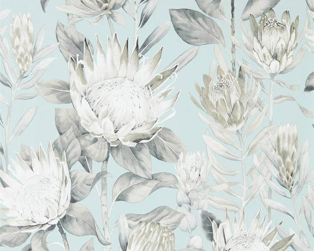 Sanderson King Protea Aqua/Linen 216645 Wallpaper
