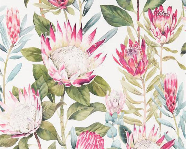 Sanderson King Protea Rhodera/Cream 216646 Wallpaper