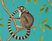 Sanderson Ringtailed Lemur Teal 216663 Wallpaper