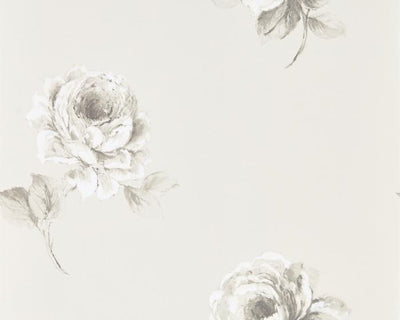 Sanderson Rosa Chalk 216276 Wallpaper
