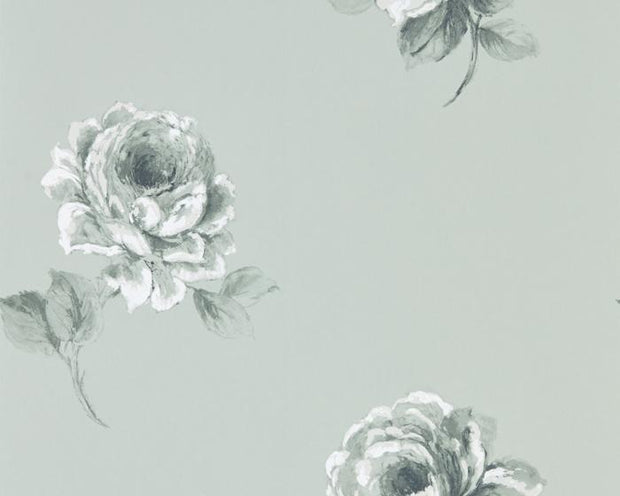 Sanderson Rosa Mint 216278 Wallpaper