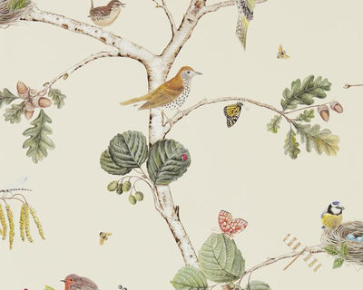 Sanderson Woodland Chorus Cream/Multi 215703 Wallpaper