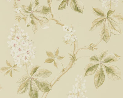 Sanderson Chestnut Tree Coral/Bayleaf 215709 Wallpaper