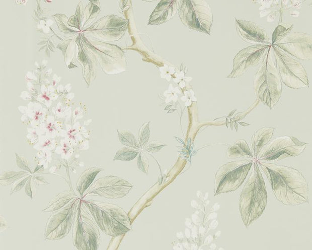 Sanderson Chestnut Tree Seaspray/Peony 215710 Wallpaper