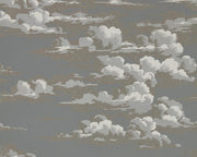 Sanderson Wallpapers Silvi Clouds Taupe Grey 216603 Wallpaper