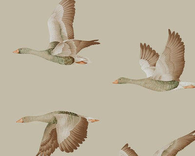Sanderson Wallpapers Elysian Geese Briarwood 216609 Wallpaper