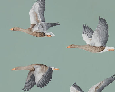 Sanderson Wallpapers Elysian Geese Blue Clay 216610 Wallpaper
