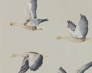 Sanderson Wallpapers Elysian Geese Gilver 216611 Wallpaper
