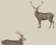 Sanderson Wallpapers Evesham Deer Birch 216618 Wallpaper