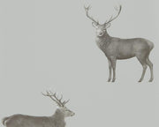 Sanderson Wallpapers Evesham Deer Silver Grey 216619 Wallpaper