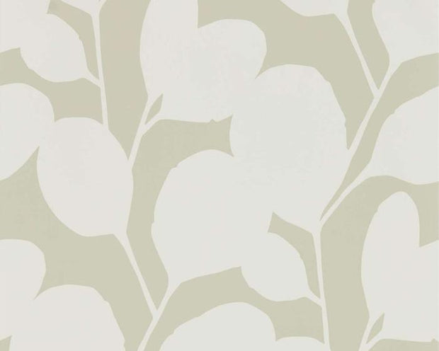 Scion Ocotillo Pebble 111819 Wallpaper