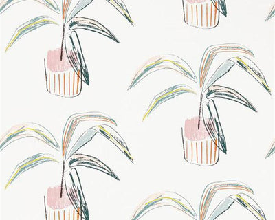 Scion Crassula Blush/Mint 111992 Wallpaper
